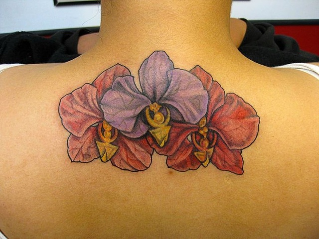 orchid, orchid tattoo, flower tattoo, markus, markus anacki, kaleidoscope tattoo, cambridge, black and gray, boston, tattoo, markus, cambridge tattoo, boston tattoo, tattoo shop, tattoo shop cambridge, boston tattoo convention,