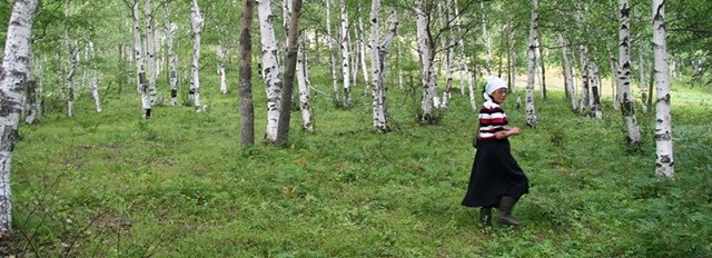 Birch Forest  Svetlana Rosugbu Birch Bark Artist