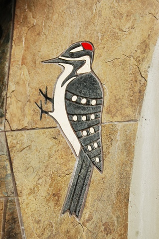 Segal Woodpecker