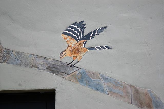 Segal Hawk