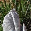 Stone on Walnut