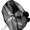 "3DM of ""Molar Tie-Pin"""