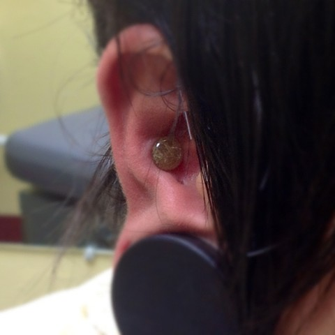 Initial 0g Conch