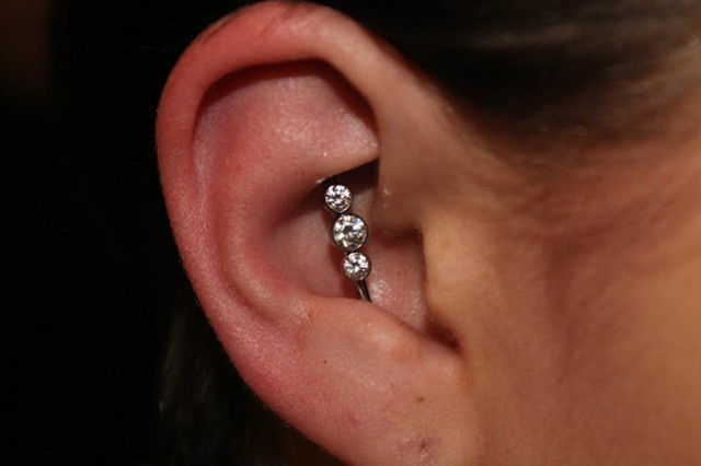Vertical Conch-Conch Industrial