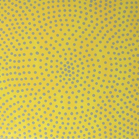 Gray Cosmos on Citrus Field