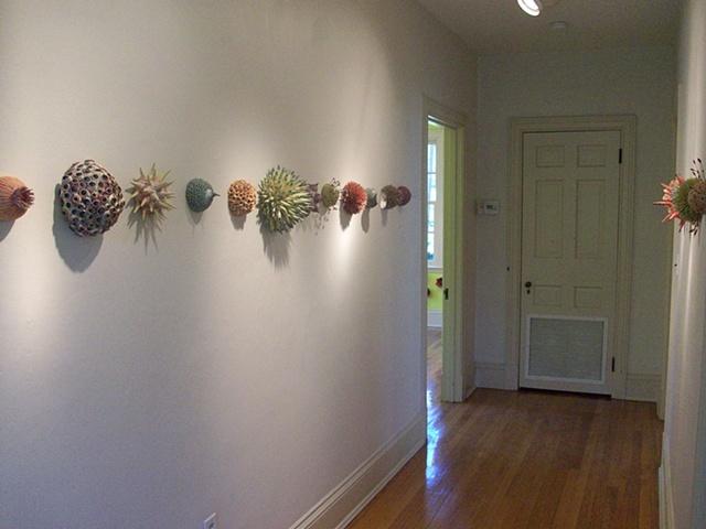 Botanicals, gallery view