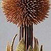LURE (circium) detail