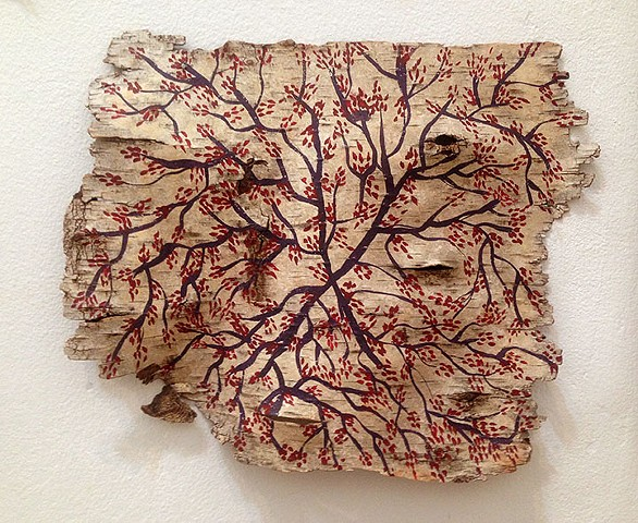 Birch Bark Drawing #7