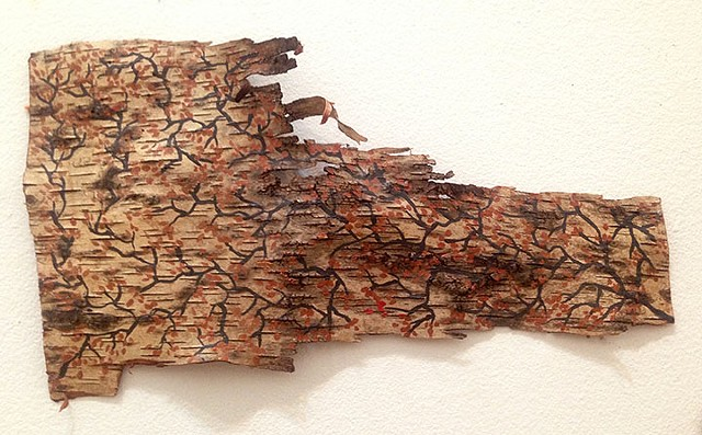 Birch Bark Drawing #12