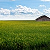Abandoned barn in field