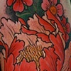 Peony with Cherry blossoms