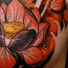 Koi and lotus