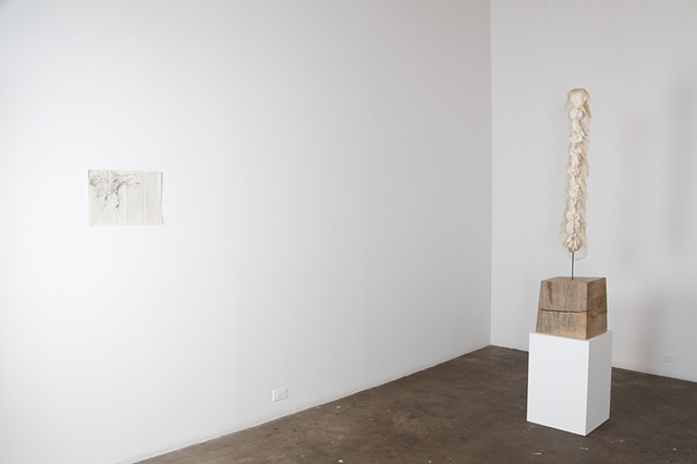 Installation at Carrie Secrist Gallery