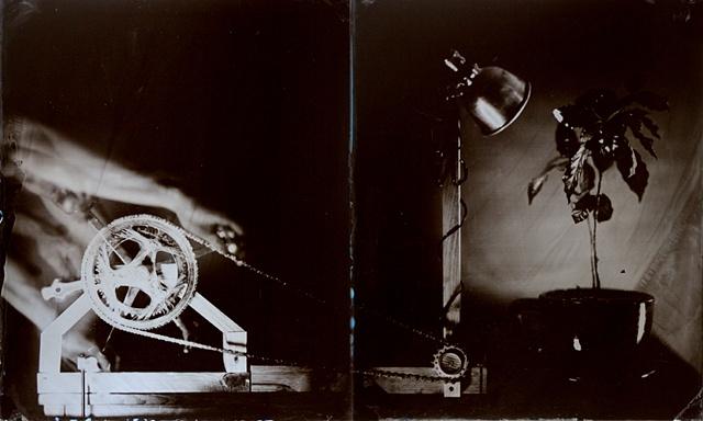 Photo Cycle