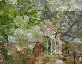 Cornell Sage Chapel with pear tree transparent overlay