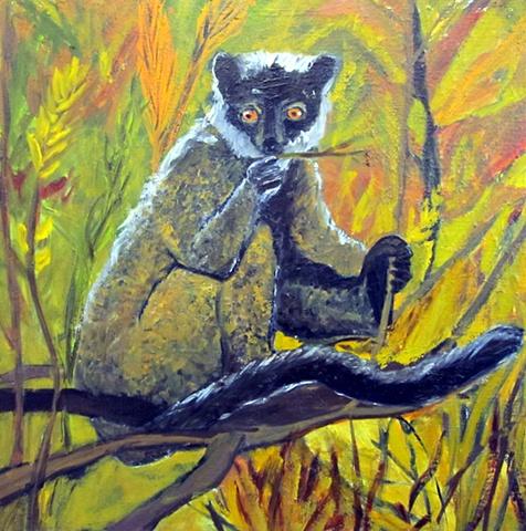 Lemur Friend