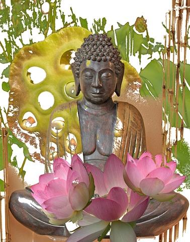 Photo montage of Lotus and Buddha image
