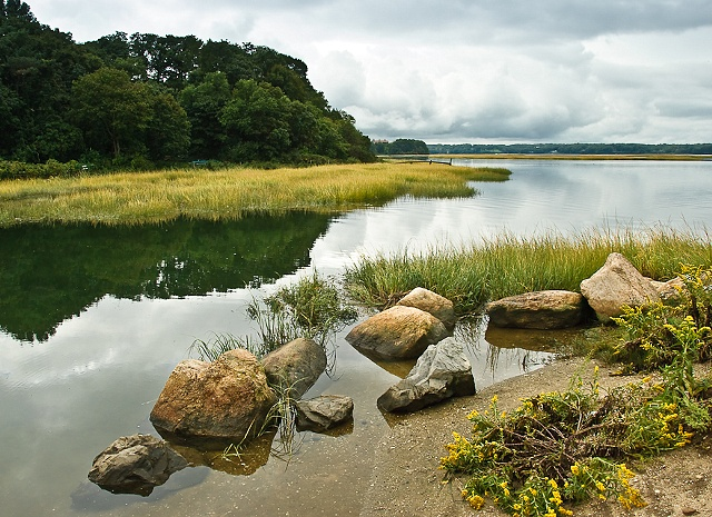 Low Tide with Clouds by JoAnne Dumas
