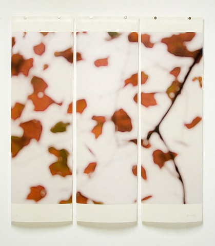 Printed on Japanese Kozo and infused with encaustic