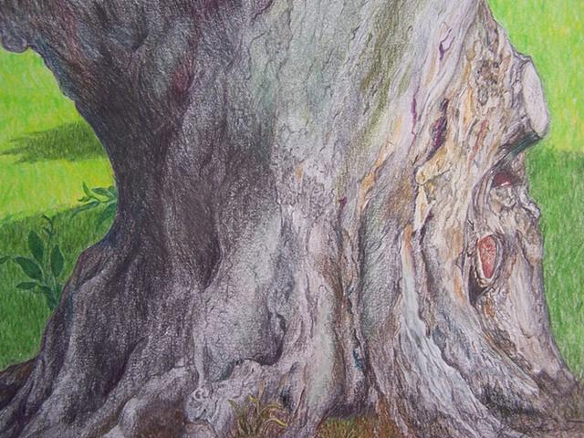 Carl's Tree