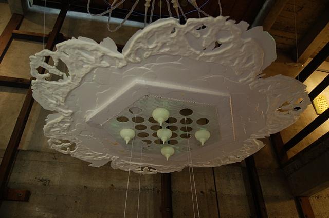 Chandelier for Ernst Haeckel  (Installation view 3)