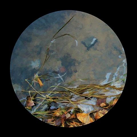 Pond edge, Mountain Pond
