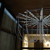 Chandelier for Ernst Haeckel  (Installation view 4)