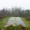 Dave Hebb Irrigated Field #1
