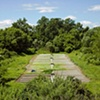 Dave Hebb Irrigated Field #4