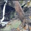 Plattekill Falls (Force of Nature)