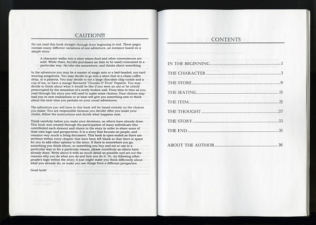 """""""The Usual"""" - A Create Your Own Adventure Story  (Pages iii and iv)"""