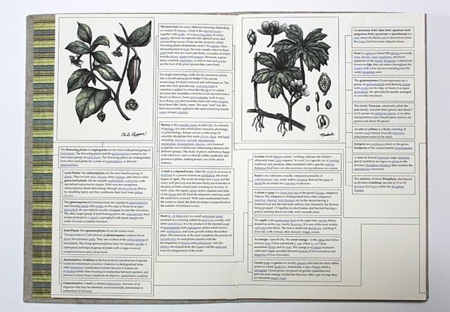 Pedia (Page 10 - 11)