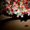 Installation Work Too Much Flower in the Cake Mixed Media 2011  Installation Work by: Dana Sikkila