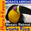 Mosaic Retreat: Costa Rica Flora & Fauna Carol Shelkin and Pam Goode November 23 - December 1, 2013