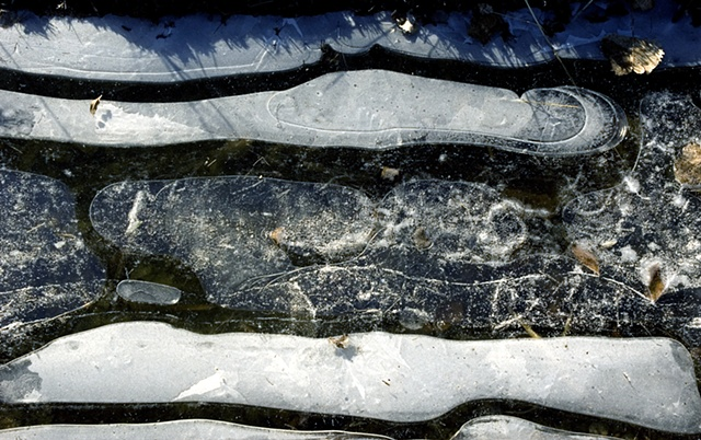 Ice Siskind, Hegewisch Marsh, Calumet area, Chicago