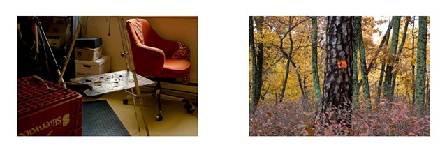 Diptych: Artist's Studio (John Armstrong), Toronto/Trail Blaze (Orange Dot), Lost River State Park, West Virginia.