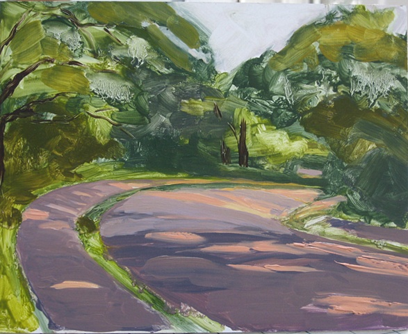 Sketched in the Arnold Arboretum in Jamaica Plain