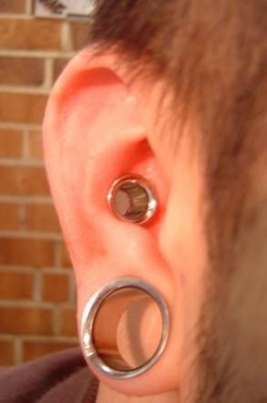 Large Gauged Conch Piercing- Piercings by Jill