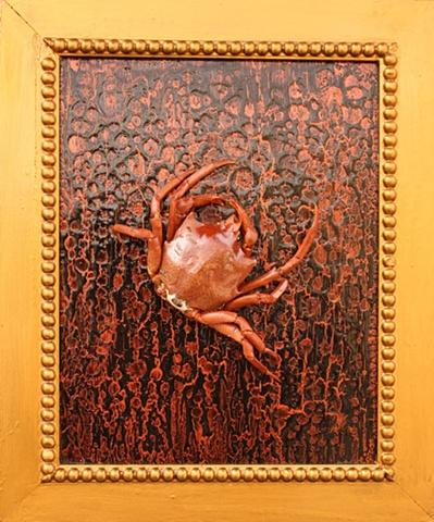 """""""Pugettia producta"""" or """"Kelp Crab"""" (SOLD)"""