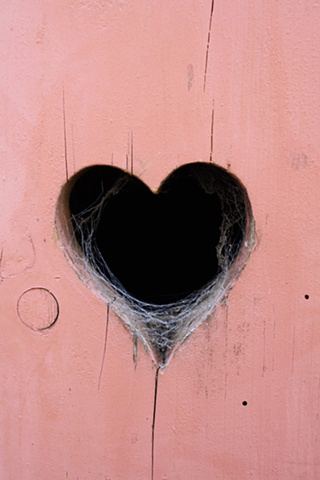 cobwebs in your heart