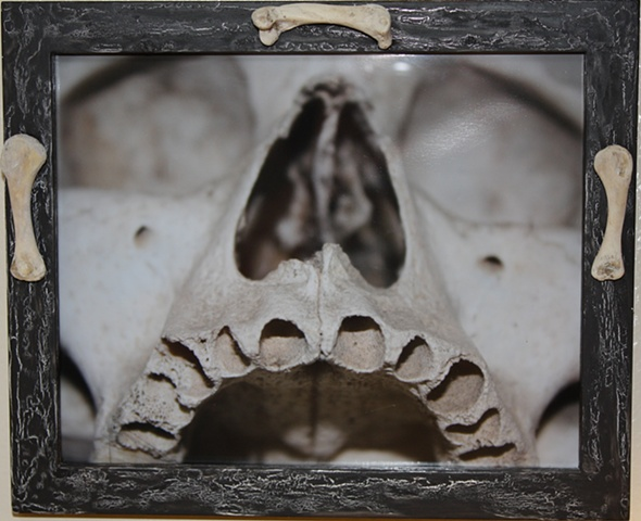 photograph of Hessian Soldier from Ossuary in Kutna Hora, Czech Republic. Real bones and embellished frame