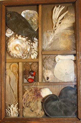 wunderkammer, wondercabinet, curio, curiosity cabinet