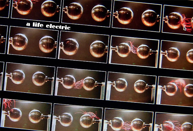 A Life Electric (March 2011)