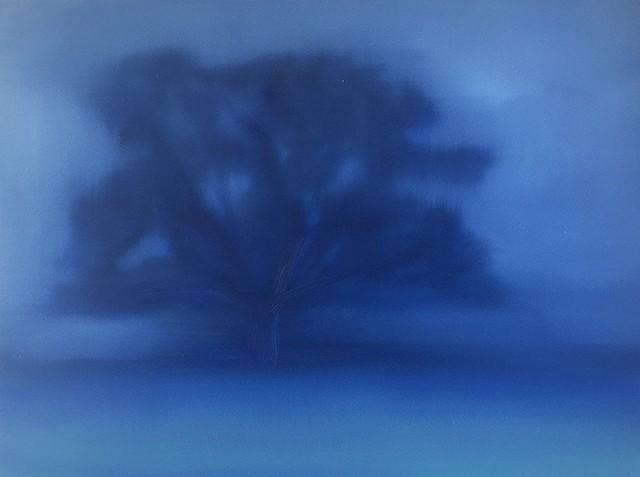 Barren Tree, Dawn
