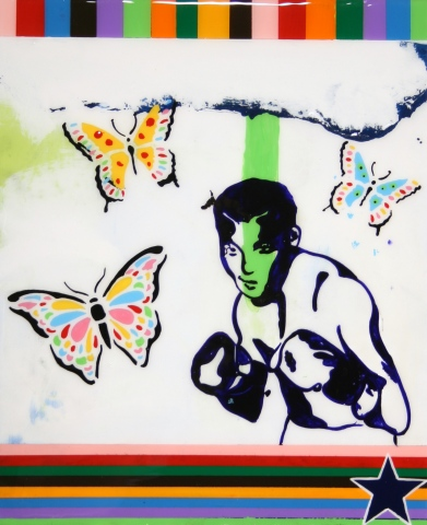 Boxing With Butterflies