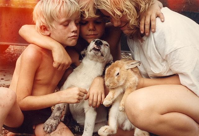 Taft Street Kids & Pets