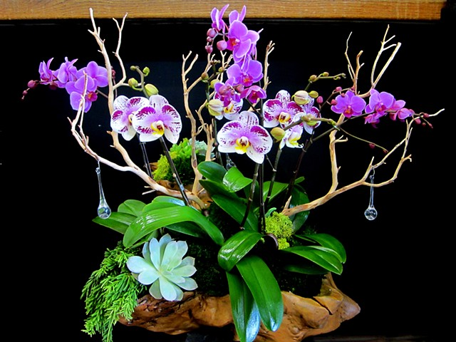 Orchids in a wood carved bowl custom designed. Naturally inspired