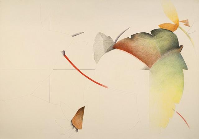 Leaves from sketchbook