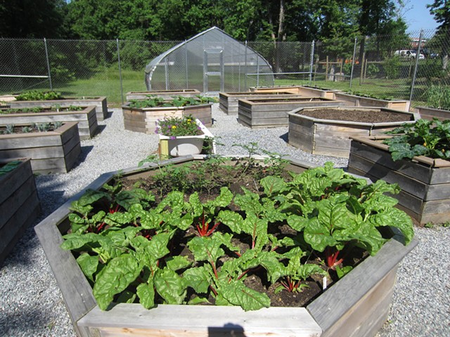 Community Gardens at THEARC.