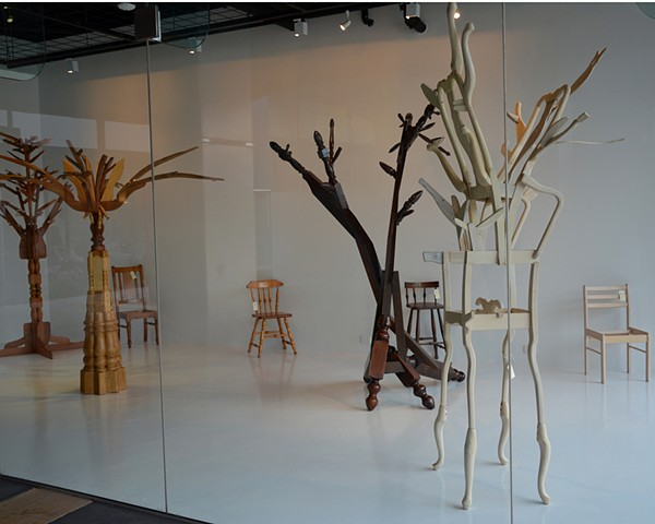 Re-Forestation Installation at Canberra Museum and Gallery